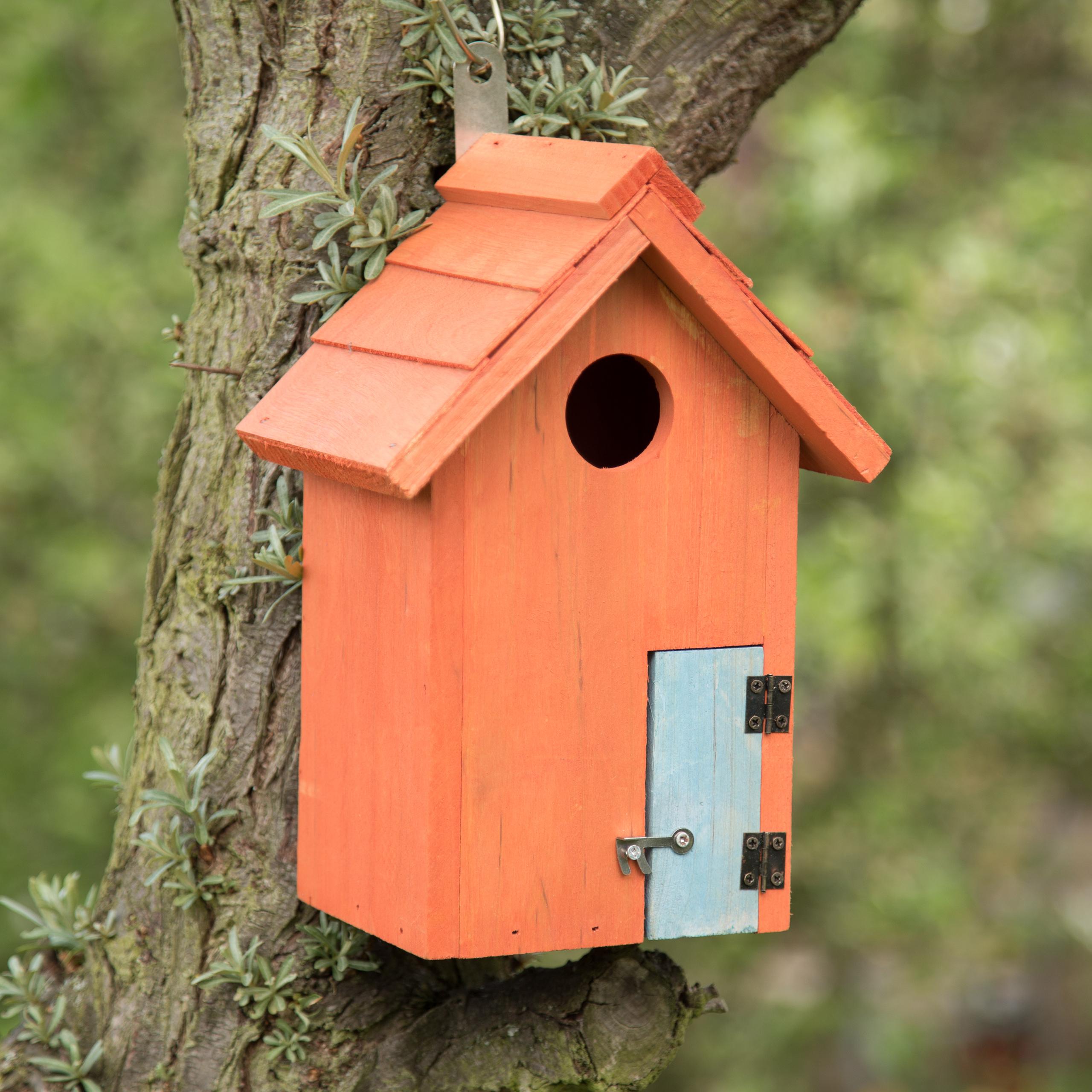 Vogelhaus Nistkasten aus Holz in Häuschenform mit Tür für Kleinvögel farbig