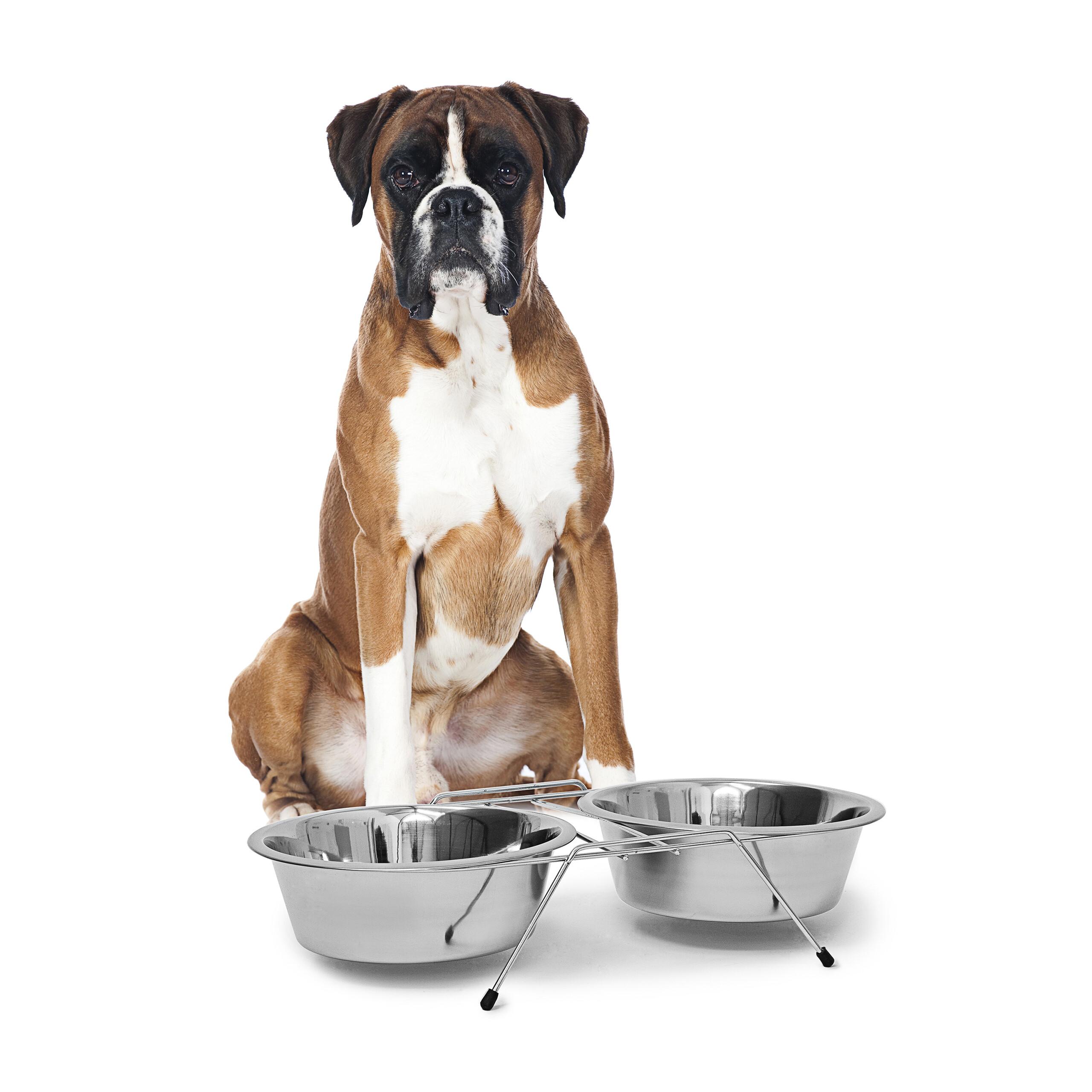 Soporte-con-2-cuencos-para-agua-y-comida-Perros-Gatos-acero-inoxidable