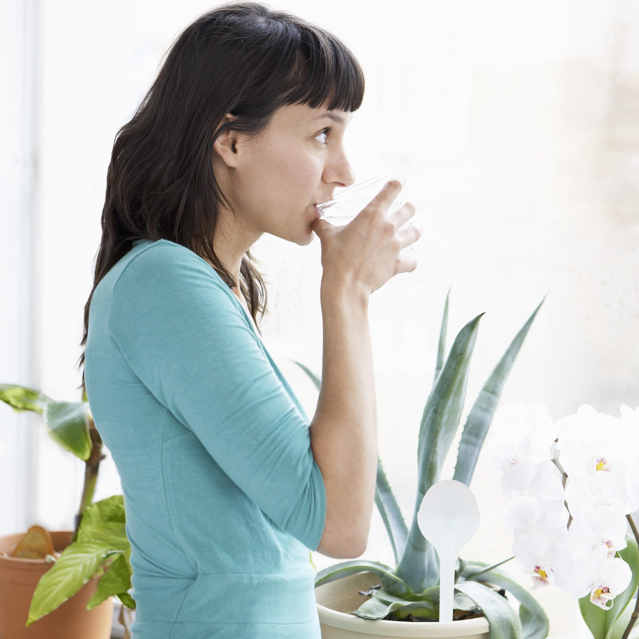 abbeveratoi in vetro per piante dosatori Set di 4 sfere per irrigazione
