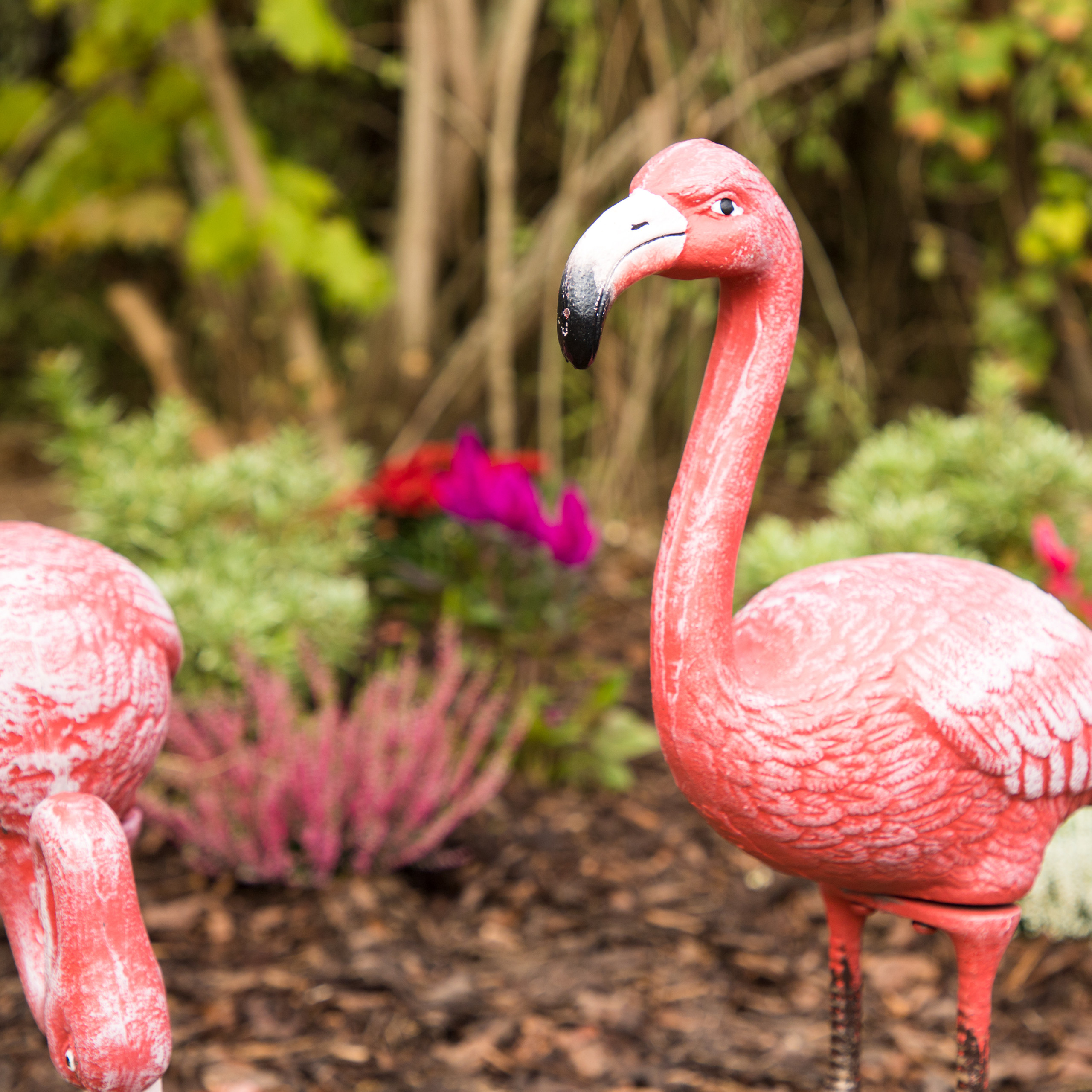 Décoration de jardin Flamand oiseau en métal statue fonte étang ...