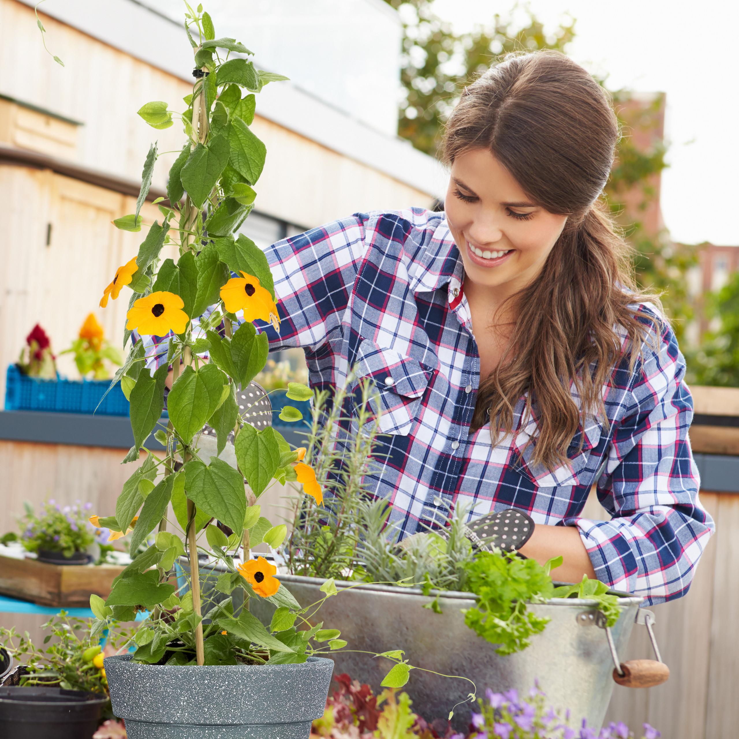 Pots-a-plantes-en-lot-de-2-ronds-Sceaux-a-plantes-Pots-ronds-Plastique-Fleurs miniature 5