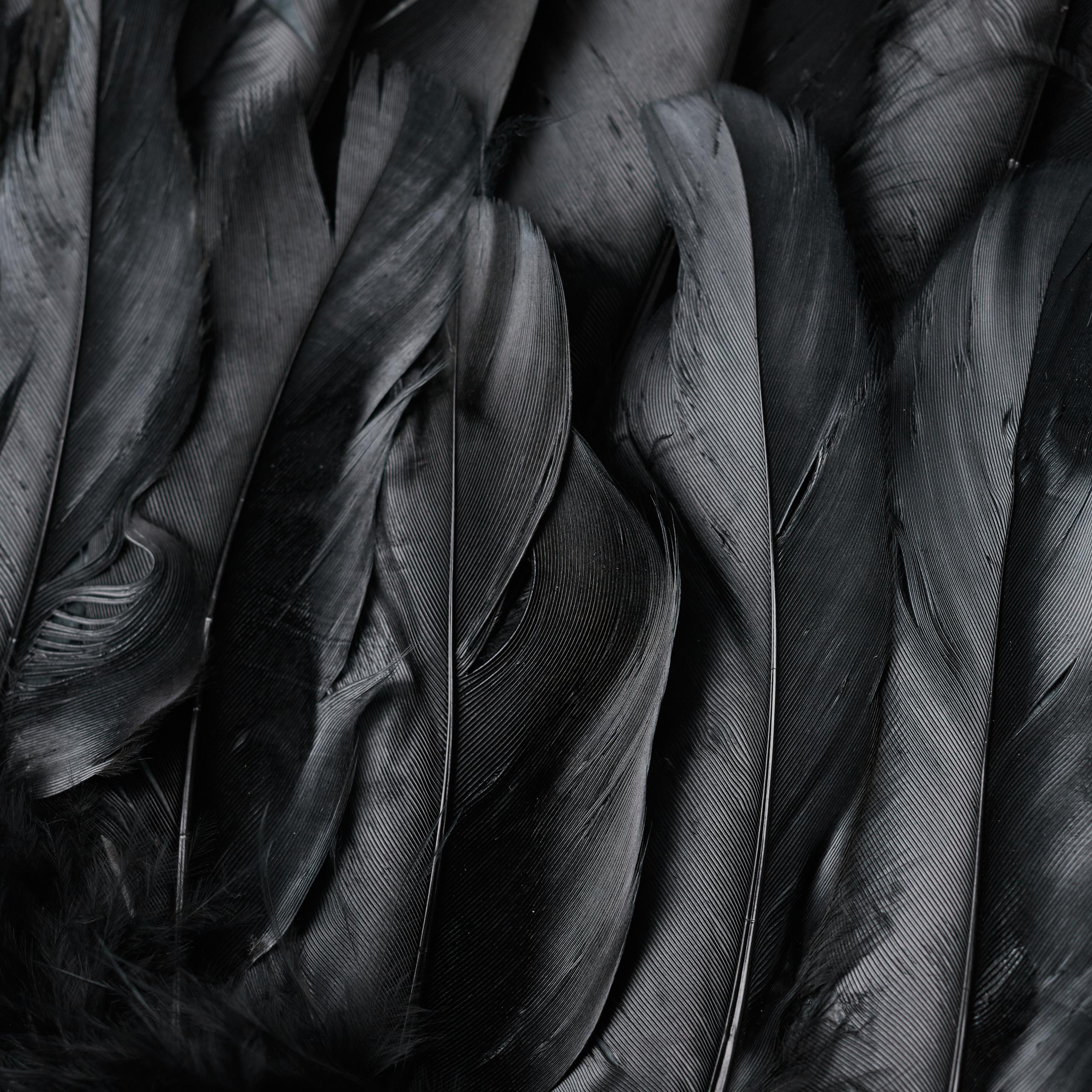 vleugels-verkleedkleding-XXL-engelenvleugels-engelkostuum-kunstveren miniatuur 15