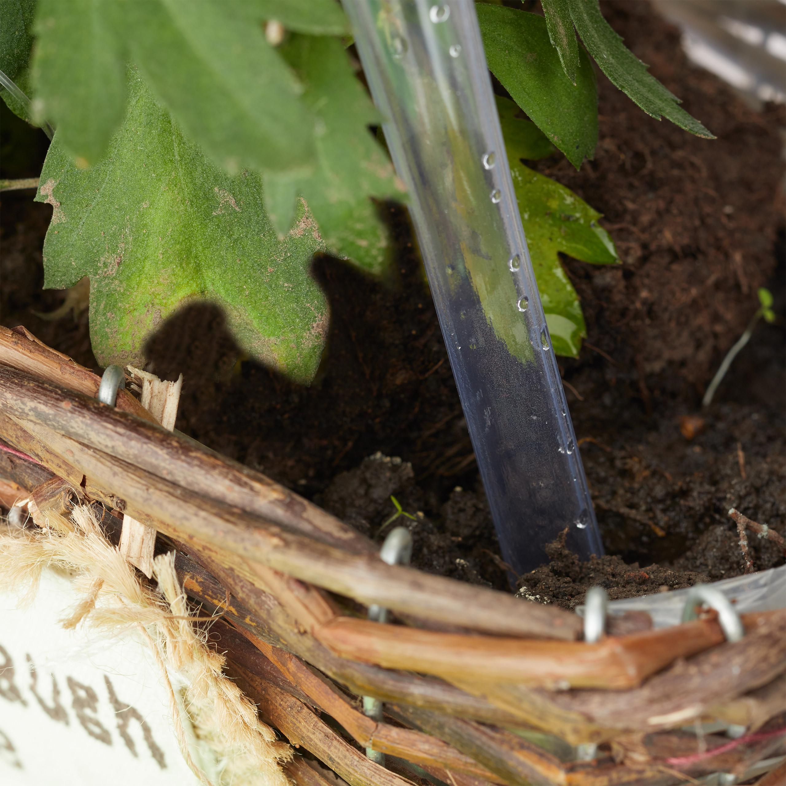 12x Bewässerungskugeln transparent Bewässerungshilfen Pflanzensitter Durstkugeln