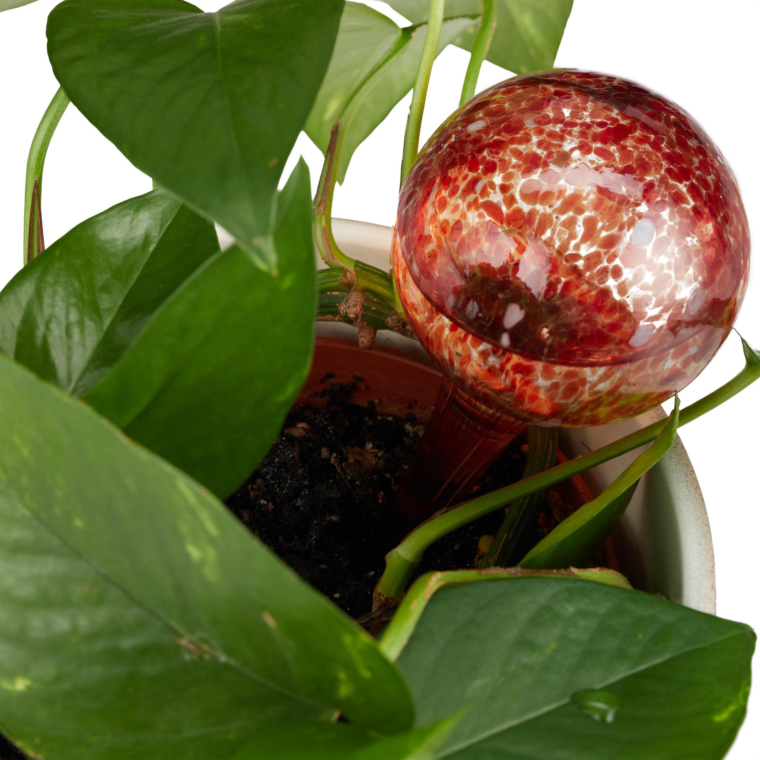 2 X balle irrigation verre rouge gießhilfe Gießkugel Ø 6 cm Fontaine à Eau Plantes